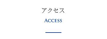 access-01.jpg